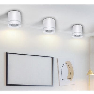 Aluminum LED Ceiling Light Dimmable 7W 10W 12W Ceiling Lights Lighting